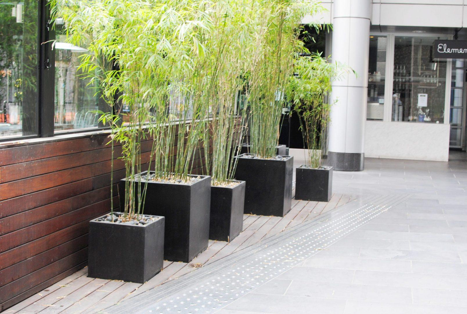 Garden Pots scaled
